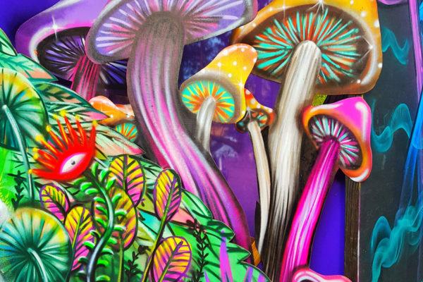 Mushroom-Valley-4